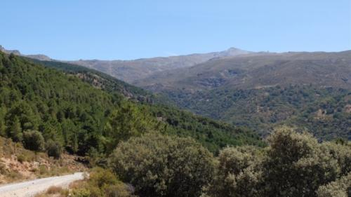 San-Jeronimo 024